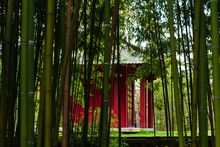 Indochinese Temple Of Remembrance. Red Temple Seen Through Green Bamboo In Tropical Garden Of Paris In Vincennes Forest. Paris, France.