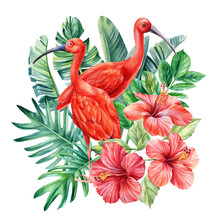 Tropical Palm Leaves, Hibiscus Flowers And Ibis Birds On An Isolated Background. Watercolor Illustration, Postcard