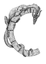 The Wingless Dragon Wraps Around The Stone Letter C
