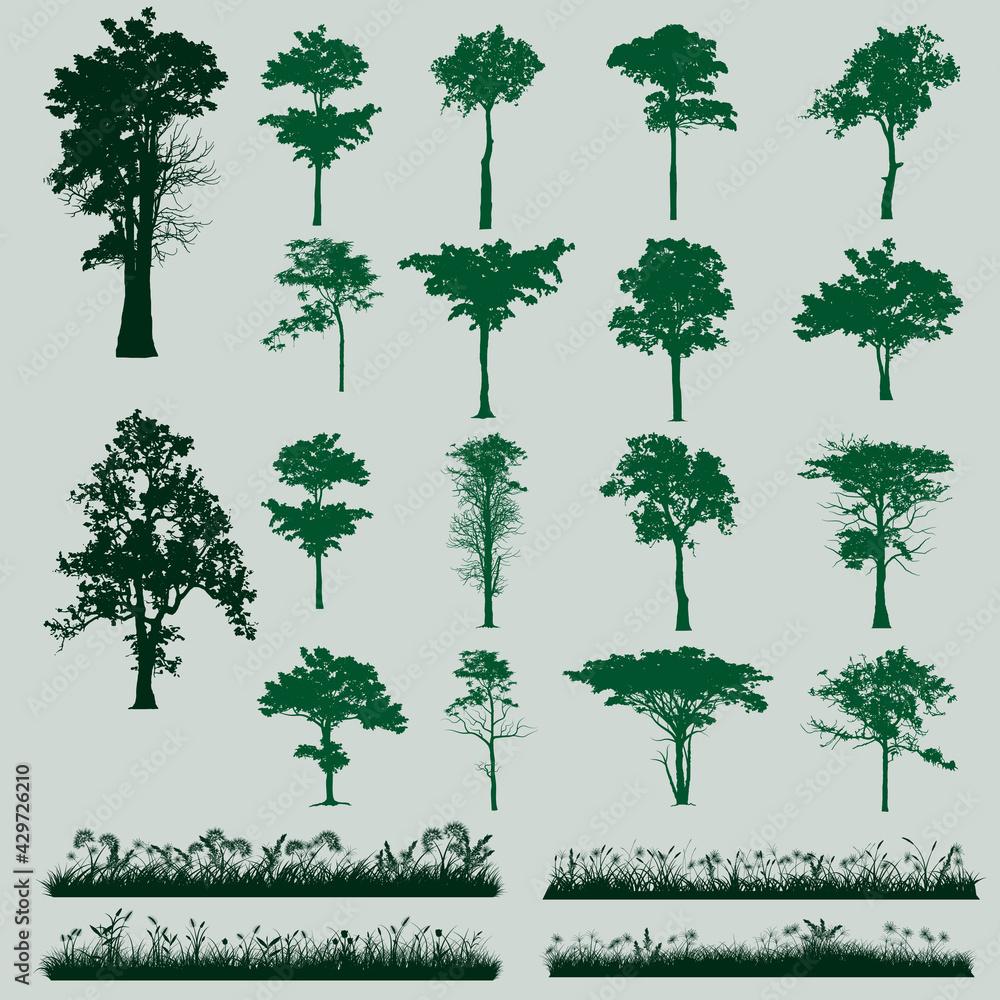 Fototapeta trees and grass silhouette