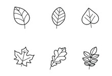 A Set Of Six Different Black And White Tree Leaves. Suitable For Designing Stories And Websites