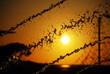 Sunset in Mallorca, Balearic Islands