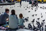 Fototapeta Miasto - gołębie