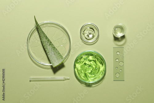 Obraz Organic cosmetic product, natural ingredients and laboratory glassware on green background, flat lay - fototapety do salonu