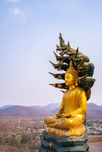 This Is A Buddha Statue,The Buddha Is Sitting In The Meditation Mudra On The Intertwined Coil Of A Naga Used As A Throne; Its Seven-headed Hood Is Spread Over The Buddha To Protect Him From The Rains.
