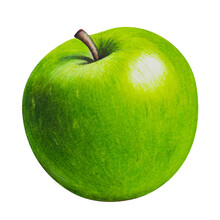 Ripe Picturesque Green Apple - Drawing With Colored Pencils Hand Painted Illustration.