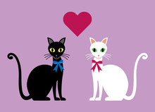 There's A Heart Between A Black Cat And A White Cat