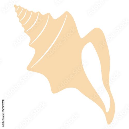 Slika na platnu Boho sea shell