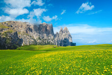 Fantastic Alpine Scenery With Yellow Dandelions On The Fields, Dolomites