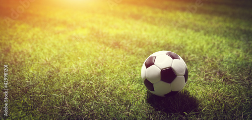 Football soccer ball on grass field - fototapety na wymiar