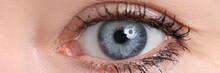 Beautiful Blue Female Eye Looking In Camera