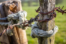 Closeup Shot Of A Rusty Barbed Wire Fence On A Wooden Pole