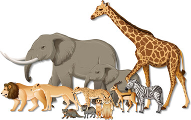 Group of wild African animals on white background
