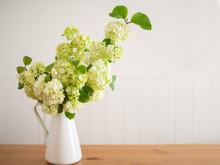 ピッチャーに生けたビバーナム・スノーボールの花