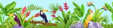 Jungle Seamless Vector Border, Tropical Exotic Background, Toucan, Parrot, Banana Leaves, Flowers, Stone. Paradise Rainforest Birds, Floral Nature Illustration. Jungle Border, Summer Hawaii Landscape