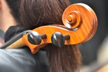 Scroll Cello With Black Pegs