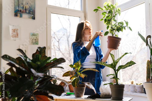 Fototapeta Young woman florist taking care of pot plants