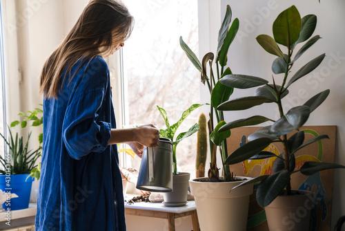 Fotografie, Obraz Young woman florist taking care of pot plants