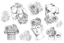 Ancient Sculpture Illustrations. Apollo Sculpture.