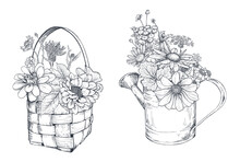 Vector Floral Compositions With Black And White Hand Drawn Herbs And Wildflowers