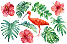 Tropical Flowers, Palm Leaves And Ibis Birds On An Isolated White Background. Watercolor Floral Design Elements
