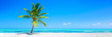 Banner Of Idyllic Tropical Beach With White Sand, Palm Tree And Turquoise Blue Ocean