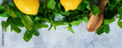 Fototapeta Concept with ingredients for homemade refreshing lemon juice lemonade, cold tea, cane sugar, and mint on old gray concrete background obraz