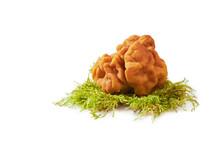 Gyromitra Gigas Or Snow False Morel, Calf Brain Or Bull Nose Mushroom Isolaed On White Background.
