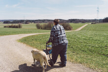 Elderly Senior Woman Walking Her Walker And Labrador Dog On A Field Path In Sunny Weather, Wearing A Ffp 2 Protective Mask Due To The Covid-19 Pandemic.