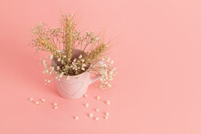 Hite Flowers Of Gypsophila And Ears Of Wheat In A Pink Mug With A Picture Of A Heart On A Pink Background, The Concept Of The Israeli Holiday Shavuot, Top View