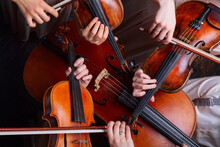 String Quartet (violins, Cello, Alt (viola)), View From Above