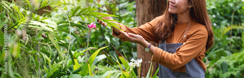 Fotografia Closeup image of a young asian female gardener taking care of plants in the gard