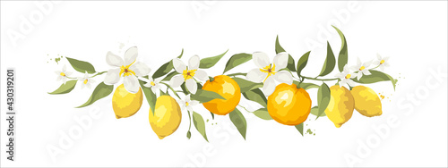Fotografie, Obraz Summer card with jasmine flowers and citrus branch