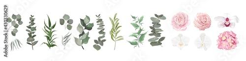 Fotografie, Obraz Vector set of flowers and herbs