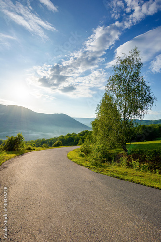 country road down the hill. beautiful travel background. sunny morning weather in mountains. trees along the path
