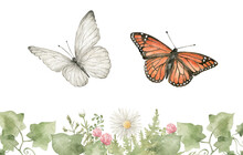Watercolor Butterfly. Summer Insect, Nature White And Orange Butterflies