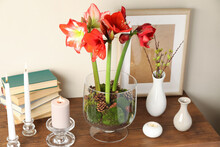 Beautiful Red Amaryllis Flowers On Wooden Table