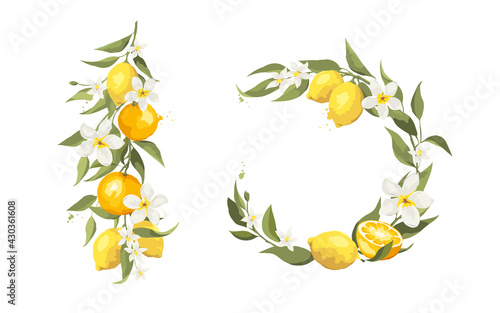 Fototapeta Summer card with jasmine flowers and citrus branch