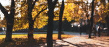 Abstract Blurred Image Of Autumn Park