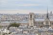 cathédrale et toit de Paris