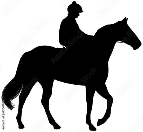 Fototapeta Race horse and jockey vector silhouette in black on white background