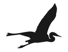 Silhouette Of A Crane Flying Open Its Wings