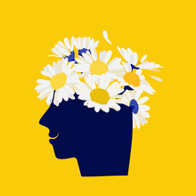 Mental Health Concept. Abstract Image Of A Head With Flowers Inside. Chamomile, Flowers And Leaves As A Symbol Of Inspiration, Calmness, Favorable Mental Behavior.