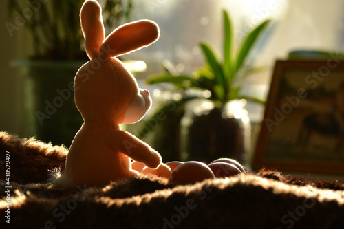 Fotografie, Obraz The Easter bunny sits on its hind legs next to chicken eggs on a soft fur rug and looks out the window at the sunny dawn