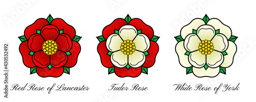 Tudoe rose of Englnd vector illustration. - fototapety na wymiar