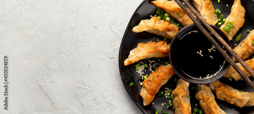 Fotografering Fried gyoza dumplings with soy sauce and onion on light gray background
