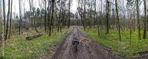 Fotografia, Obraz bezdroża w lesie wiosną na Śląsku w Polsce, okolice Rybnika