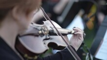 Woman Violinist Plays With A Bow On An Old Vintage Violin. Close-up Video