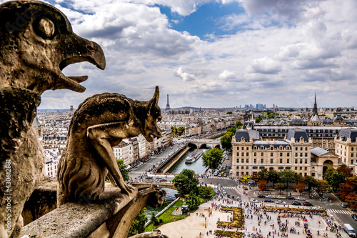 Carta da parati Parigi - Paris Notre Dame