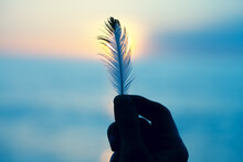 Young Woman's Hand Holding White Soft Feather Against The Sun, Spiritual Background, Freedom, Relaxation, Hope And Meditation Concept